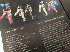 写真:和英併記のパンフレット